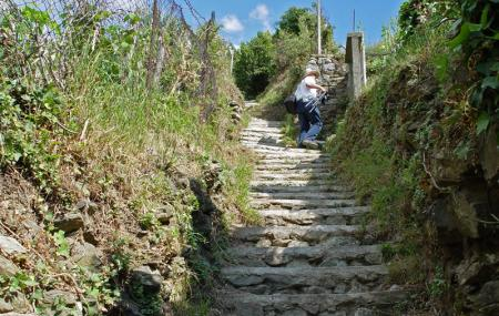Footpath Monterosso Image