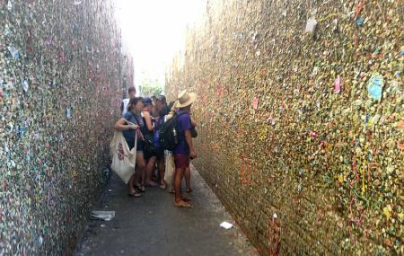 Bubblegum Alley Image