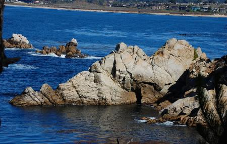Point Lobos State Reserve And China Cove Gibson Beach, Carmel-by-the-sea
