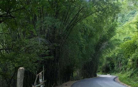 32-km Loop Road, Yercaud