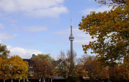 Trinity Bellwoods Park, Toronto