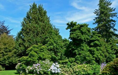 Vandusen Botanical Garden Image