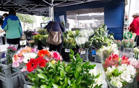 La Cigale French Market, Auckland