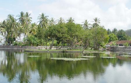 Lotus Lagoon Image