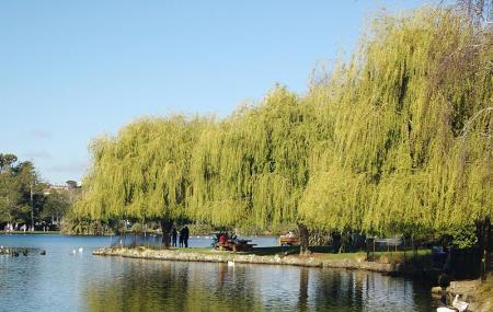 Western Springs Lakeside Park Image