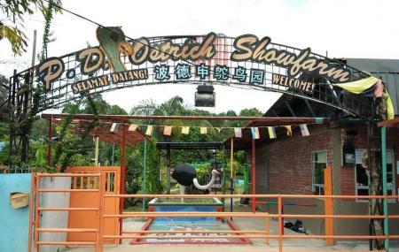 Pd Ostrich Show Farm Image
