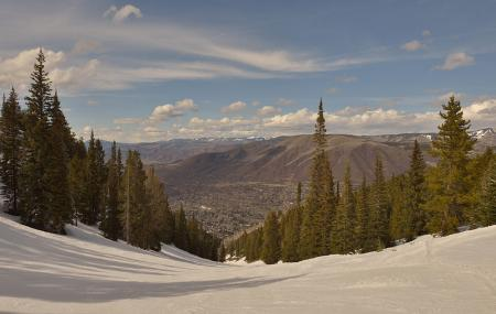 Aspen Mountain Image