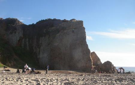 Point Dume Image