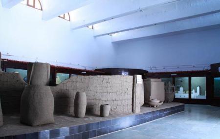 Saputara Tribal Museum, Saputara