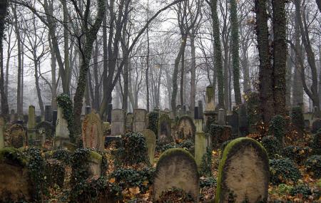 Nowy Cmentarz Zydowski, Krakow