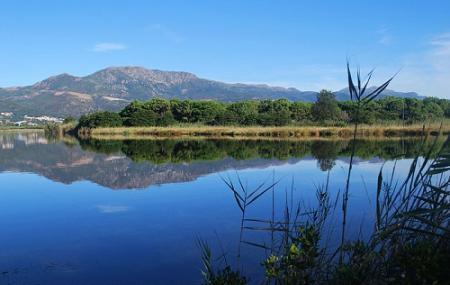 Reserve Naturelle De L'etang De Biguglia Image