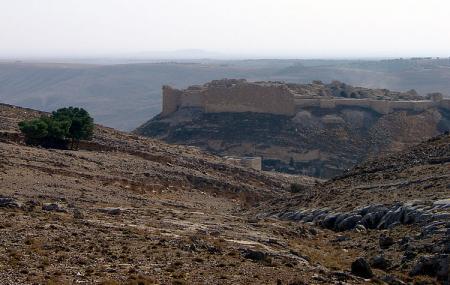 Shobak Castle Image