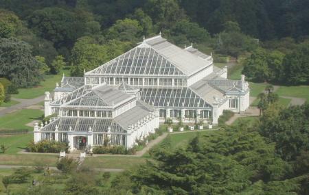 Bonsai House - Kew Gardens, Richmond