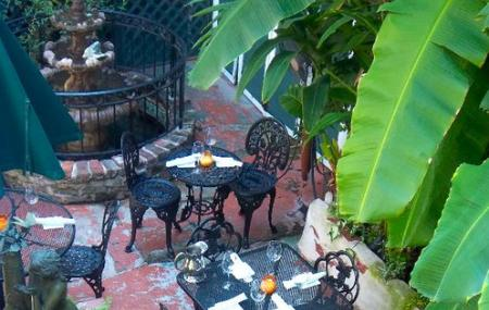 Orleans Grapevine Wine Bar And Bistro Image