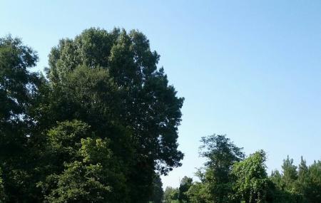 Tanglefoot Trail, New Albany