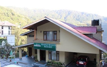 The Maplewood Resort, Gangtok