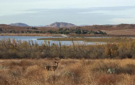 Lake Perris State Recreation Area Image