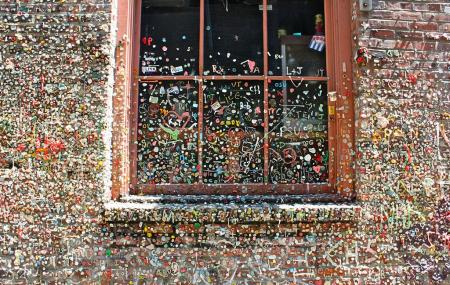 The Gum Wall Image