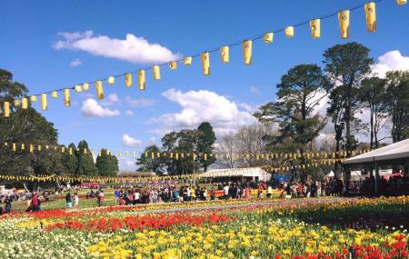 Queanbeyan Riverside Tourist Park Image
