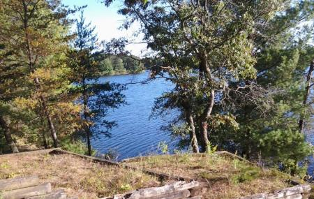 Coon Fork Lake County Park Image