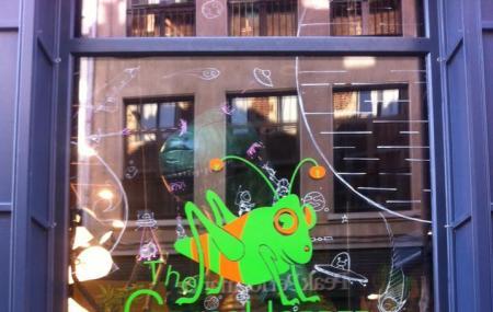 The Grasshopper Leuven Image