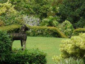 Brief Garden, Bentota