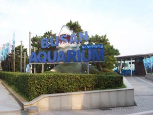 Sea Life Busan Aquarium, Busan