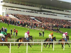 Limerick Racecourse, Limerick