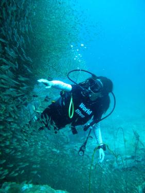 Phi Phi Diving, Ko Phi Phi Don