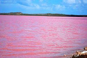Pink Lake, Kalbarri