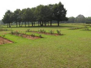Ekamra Kanan Botanical Gardens, Bhubaneshwar