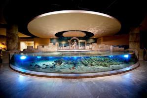 Istanbul Aquarium, Istanbul