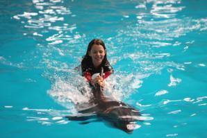 Istanbul Dolphinarium, Istanbul