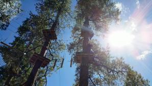 Flagstaff Extreme Adventure Course, Flagstaff