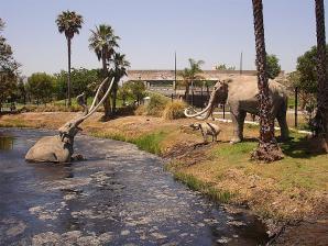 La Brea Tar Pits, Los Angeles