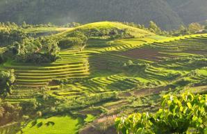 Muong Hoa Valley, Sa Pa