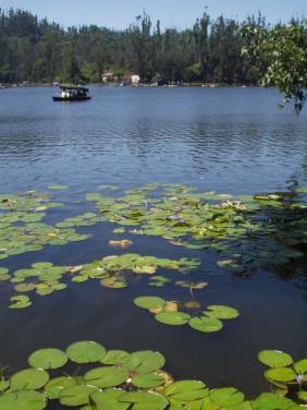 Kodaikanal Lake, Kodaikanal