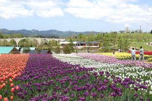 Echigo Hillside Park, Nagaoka