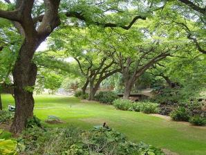 Liliuokalani Botanical Garden, Honolulu