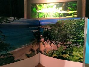 Peter Lik Gallery, Honolulu