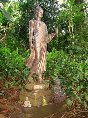Lyon Arboretum, Honolulu