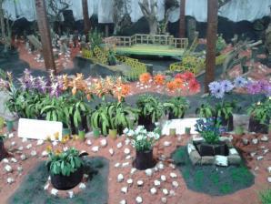 Thread Garden, Ooty