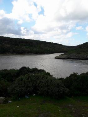 Hamsilos Koyu, Sinop