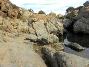 Los Penasquitos Canyon Preserve, San Diego