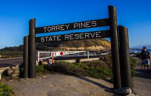 Torrey Pines State Natural Reserve, San Diego