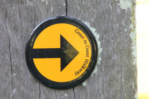 Coast-to-coast Walkway, Auckland