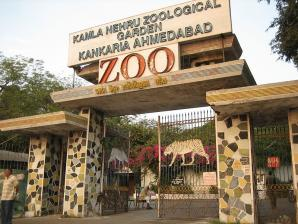 Kamala Nehru Zoo, Ahmedabad