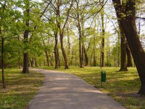Park Bednarskiego, Krakow