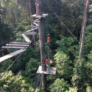 Skytrex Melaka, Durian Tunggal