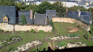 Entre Cours Et Jardins - Cite Plantagenet, Le Mans